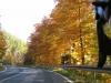 04-Herbst-Harzi 2012