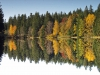09-Herbst-Harzi 2012-wo ist oben