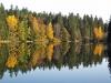 10-Herbst-Harzi 2012-und wo unten