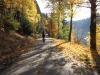 20-Herbst-Harzi 2012
