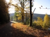 23-Herbst-Harzi 2012