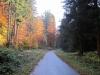 29-Herbst-Harzi 2012
