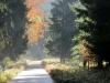 30-Herbst-Harzi 2012