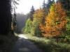 33-Herbst-Harzi 2012