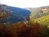 49-Herbst-Harzi 2012
