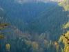 50-Herbst-Harzi 2012