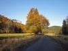 51-Herbst-Harzi 2012